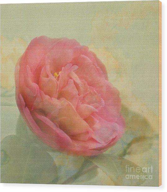 February Camellia Wood Print