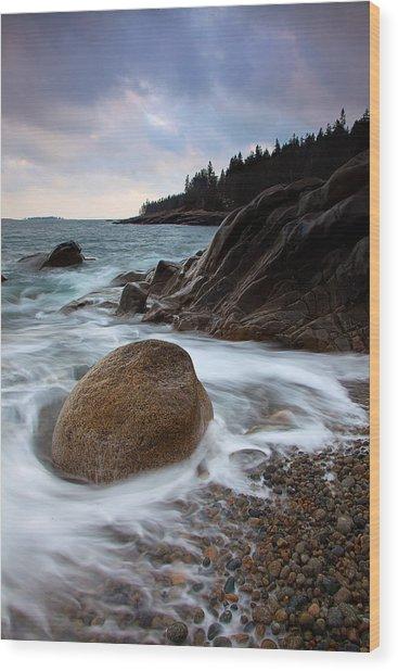 February Tides Wood Print