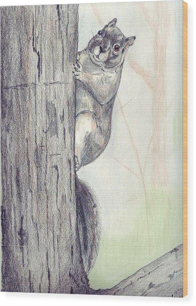 Feeder Raider Wood Print by Debra Sandstrom