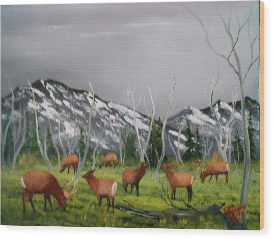 Feeding Elk Wood Print