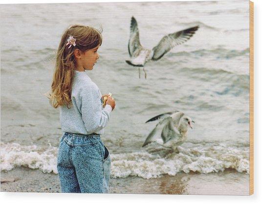 Feeding Gulls Wood Print