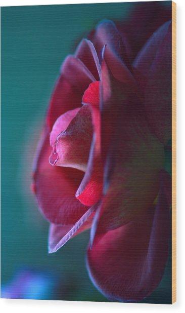 Feeling Blue Wood Print by Mandy Wiltse