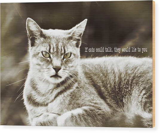 Feline Moment Quote Wood Print by JAMART Photography