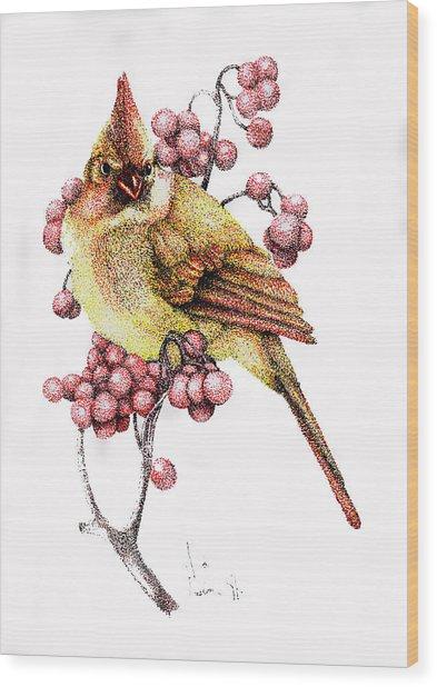 Female Cardinal Wood Print by Preston Shupp