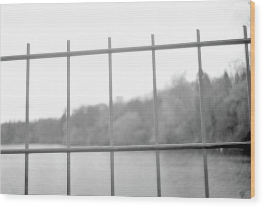 Fence Against Nature Wood Print