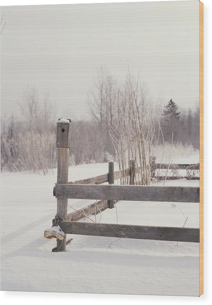 Fence And Birdhouse In The Snow Wood Print by Gillham Studios