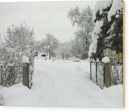 Fence And  Gate In Winter Wood Print