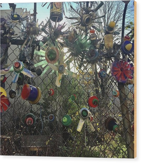 Fence Decorations Surrounding A Wood Print by Gina Callaghan