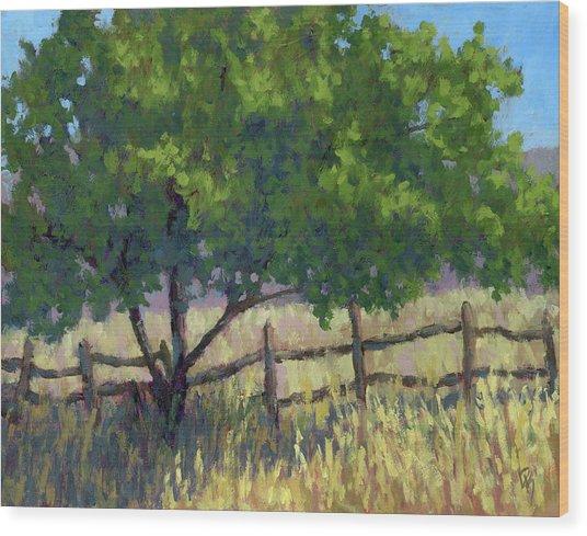 Fence Line Tree Wood Print