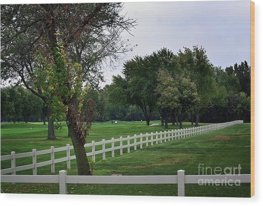 Fence On The Wooded Green Wood Print