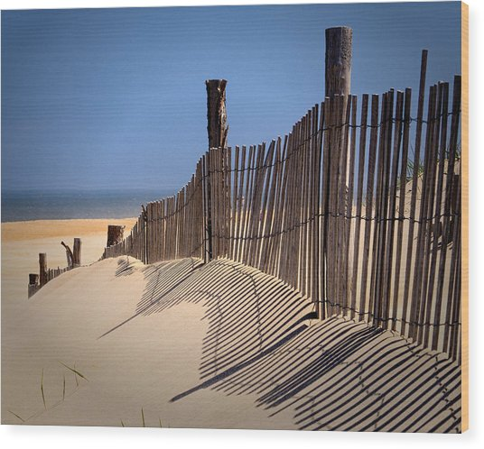 Fenwick Dune Fence And Shadows Wood Print