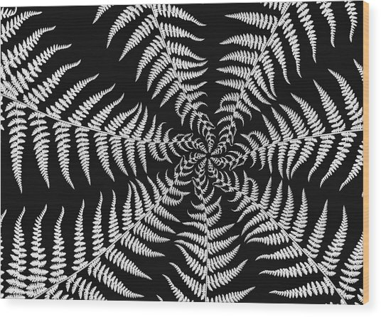 Fern Abstract Wood Print by Edward Myers