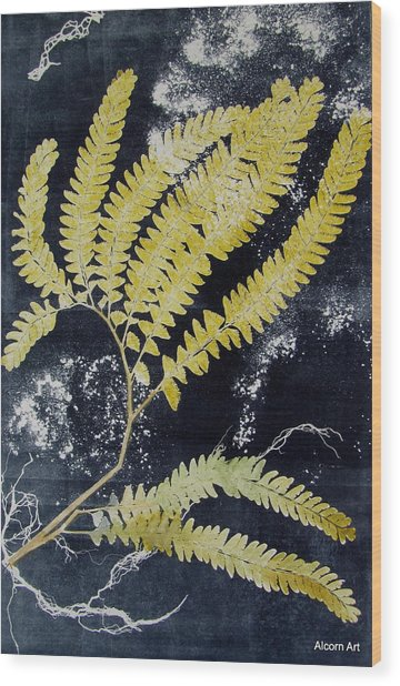 Fern Monoprint Wood Print by Brenda Alcorn