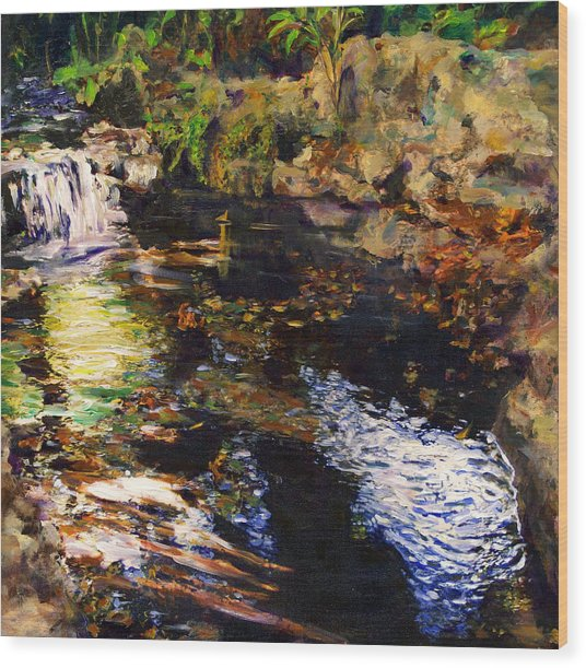 Ferndale Creek Wood Print