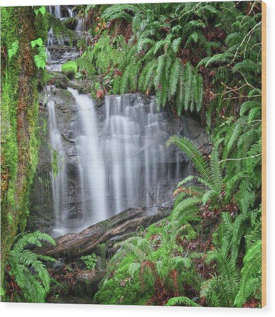 Ferns And Waterfalls Wood Print