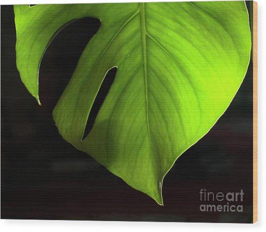 Fhgreen Wood Print