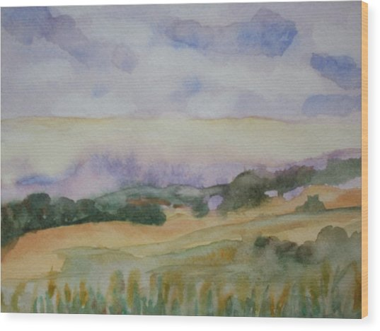 Field And Sky 1 Wood Print by Warren Thompson