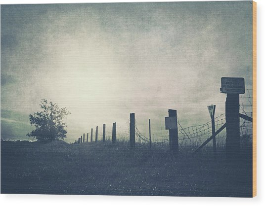 Field Beyond The Fence Wood Print