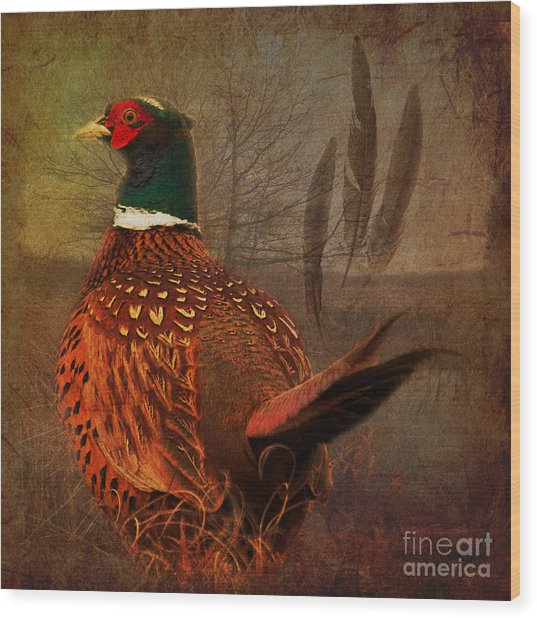 Field Finery 2015 Wood Print