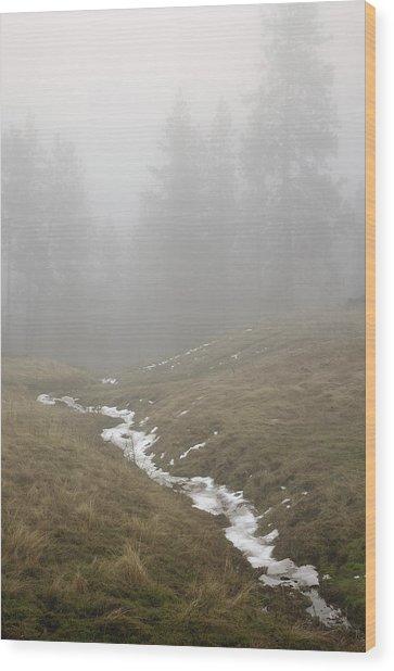 Field Near Elberton Wood Print by Jerry McCollum