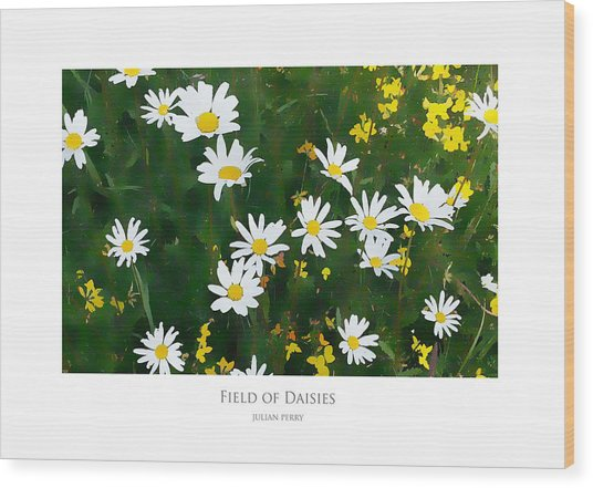 Wood Print featuring the digital art Field Of Daisies by Julian Perry