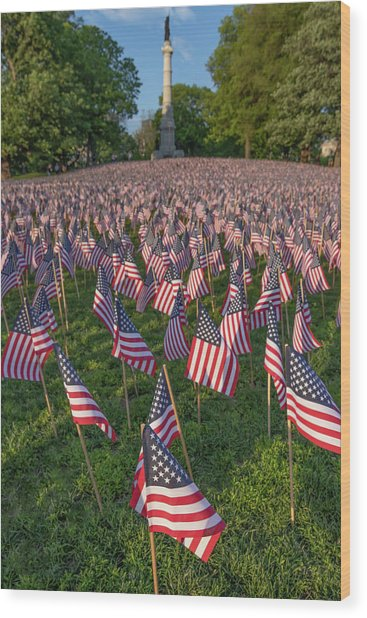 Field Of Flags At Boston's Soldiers And Sailors Monument Wood Print