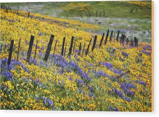 Field Of Gold And Purple Wood Print