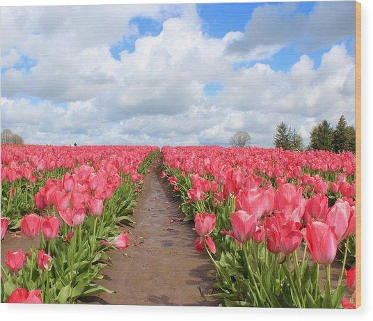 Field Of Pink Wood Print