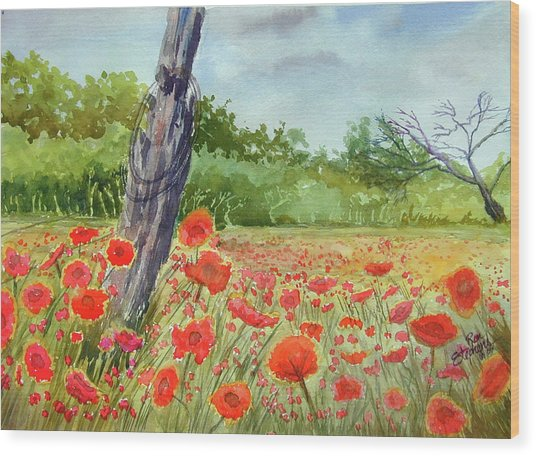 Field Of Red Flowers Wood Print