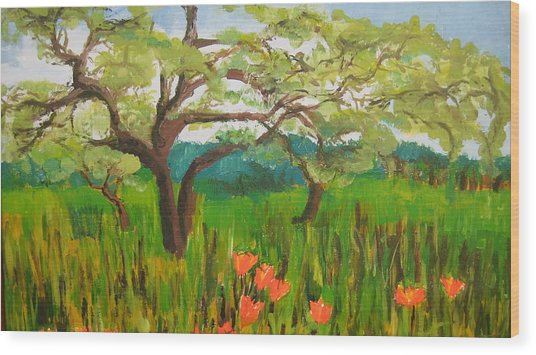 Field Of Red Poppies Wood Print by Mabel Moyano