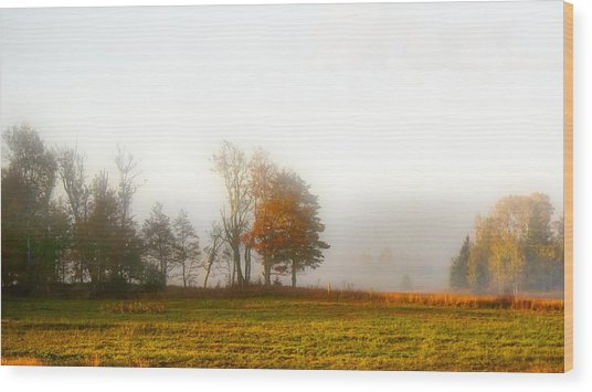 Field Of The Morn Wood Print