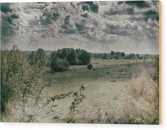 Field Road. Zamistya, 2013. Wood Print