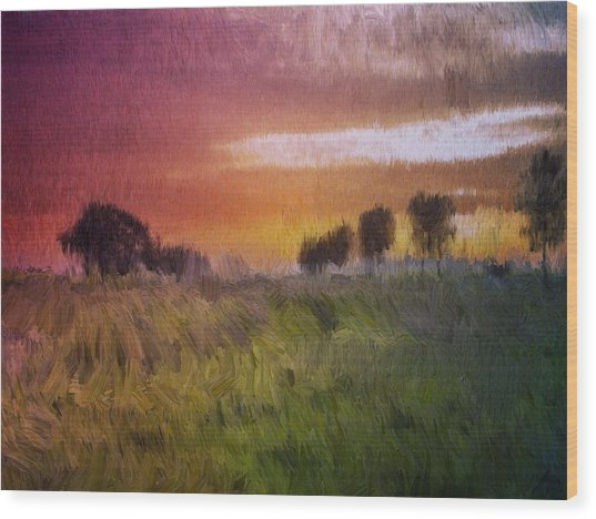 Fields Of Green Wood Print