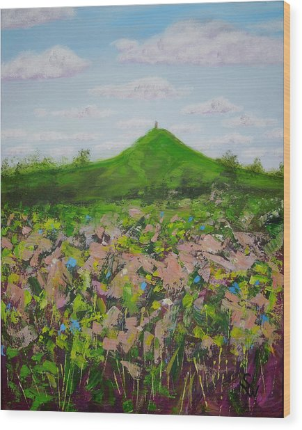 Fields To Glastonbury Tor Wood Print
