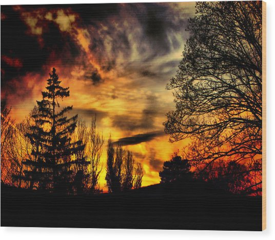 Fiery Forest Sunset Wood Print