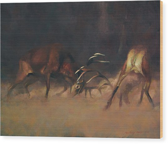 Fighting Stags I. Wood Print