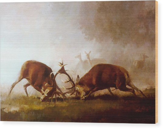 Fighting Stags II. Wood Print