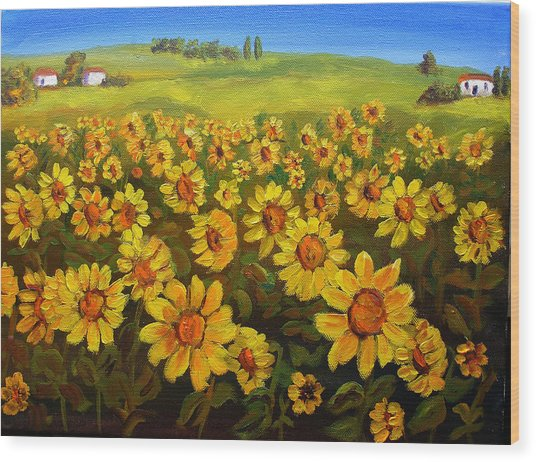 Filed Of Sunflowers Wood Print by Mary Jo Zorad