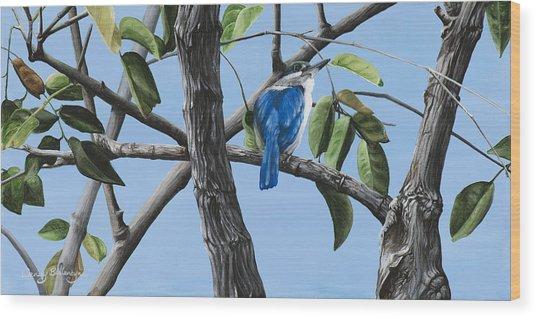 Filipino Kingfisher Wood Print