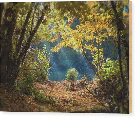 Filtered Light 3 Wood Print