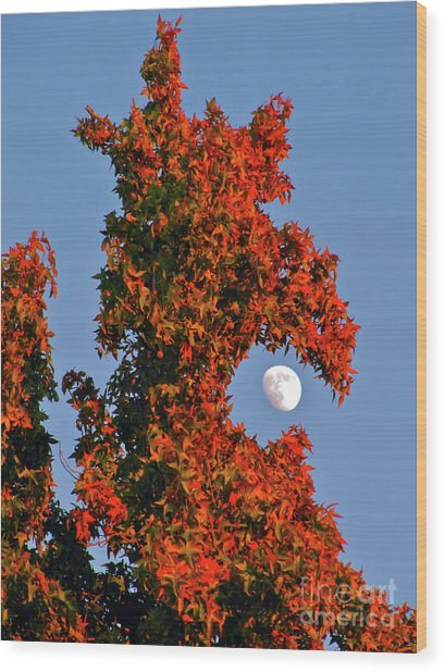 Fire Dragon Tree Eats Moon Wood Print