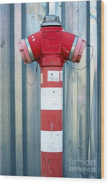Fire Hydrant Steel Wall Wood Print