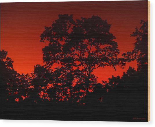 Fire In The Sky Wood Print by Frank Mari
