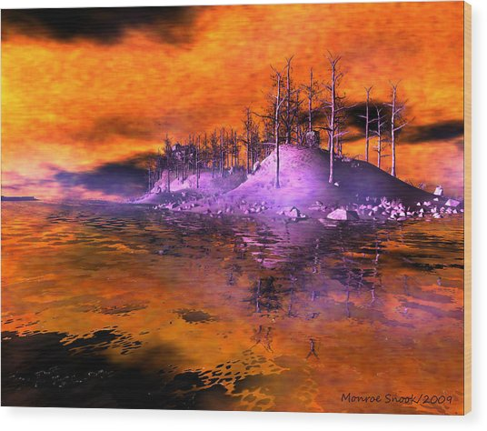 Fire Island Wood Print by Monroe Snook
