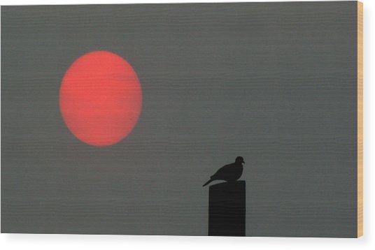 Fire Sun Sentinel Wood Print
