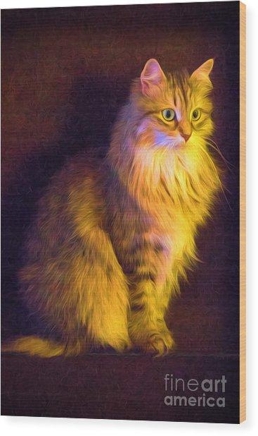 Fireside Feline Wood Print