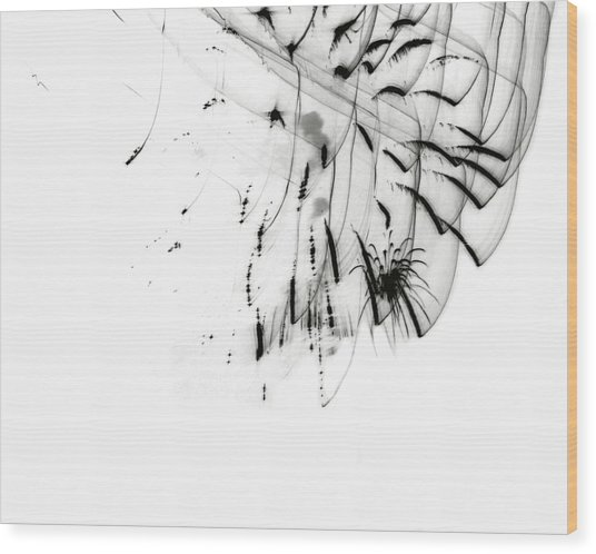 Firework Abstract 5 Wood Print