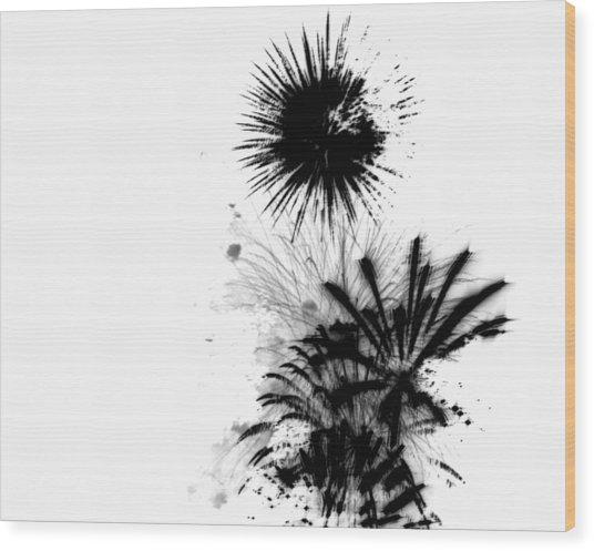 Firework Abstract 9 Wood Print