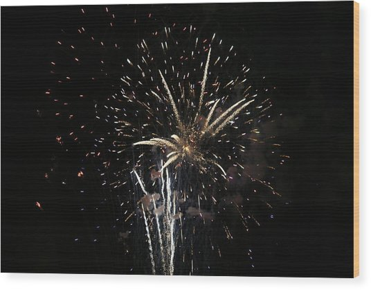 Firework In Action Wood Print by Magda Levin-Gutierrez