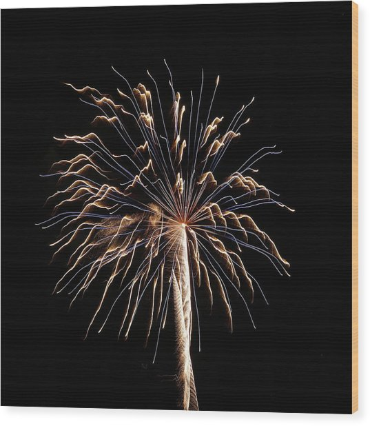 Fireworks From A Boat - 13 Wood Print